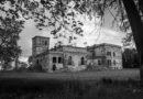 Pałac w Wierzbiu – czy musi umrzeć?