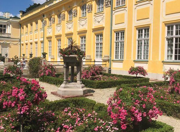 ogród Pałacu w Wilanowie