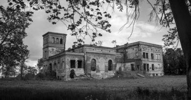 pałac w wierzbiu