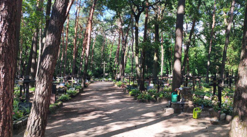 Cmentarz leśny w Laskach – niezwykłe miejsce w Kampinosie